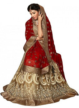 Over the Head Saree Drape