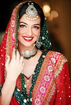 Pakistani Style Saree