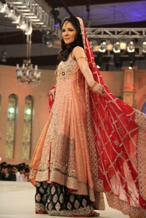 Pakistani Anarkali