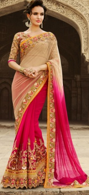 Sheer and Opaque Saree