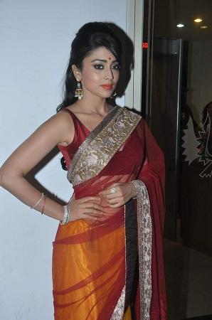 net saree with broad border