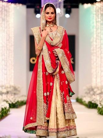 pakistani-saree