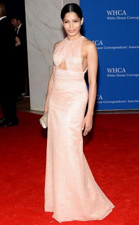 Freida Pinto in Pastel Gown