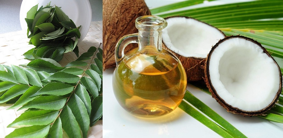 Curry Leaves Coconut Oil Mix For Black Hair