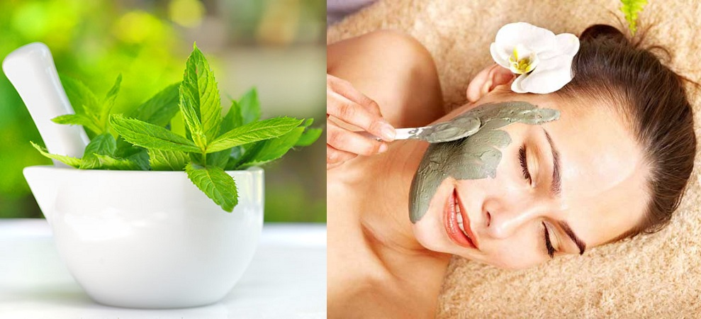 Mint Leaves Face Pack