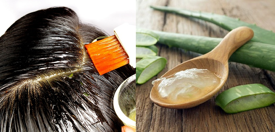 Appy Aloe Vera To Grow Hair Faster