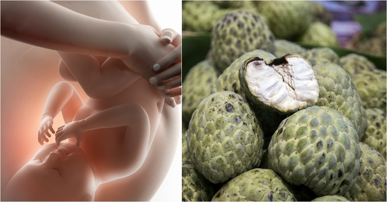 Health Benefits of Custard Apple in Pregnancy