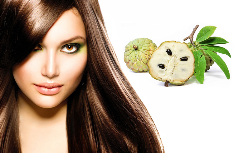 Health Benefits of Custard Apple for Hair